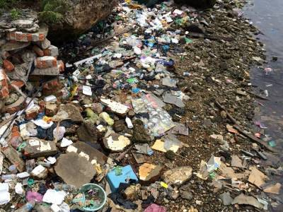 Help find biotechnology solutions for industrial waste challenges in India
